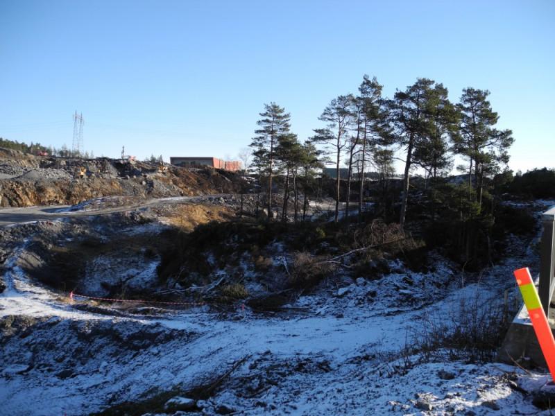 Djupadalen og steinalderbustad (10)