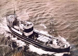 Bilete: Forteljaren min, Erik N. Saue vart seinare medeigar i fiskebåten «Torgny». På bilete er denne på veg til fiskefeltet, utstyrt med tønnene som dei foredla sild i. Foto: Privat